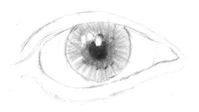 Auge lebendig machen
