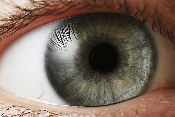 Auge zeichnen nach foto