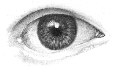 augen Wimpernreflexion zeichnen